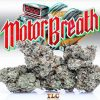 Buy Jungle Boys Motor Breath Online