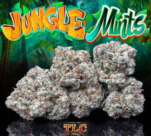 Jungle Mints